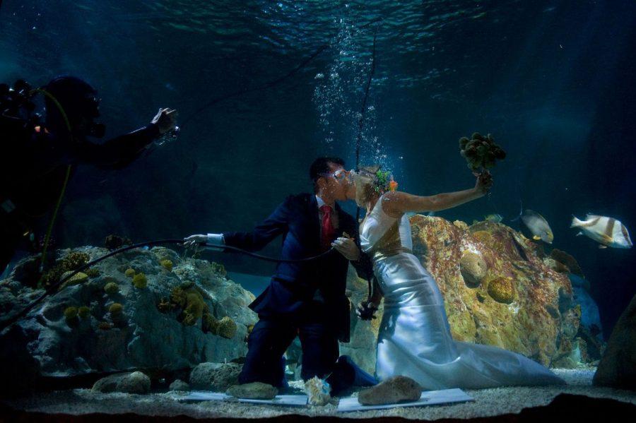 Варианты форматов свадьбы